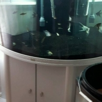 Fish Tank for sale R1000