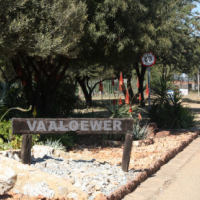 Vaaloewer - Bargain price stand for sale