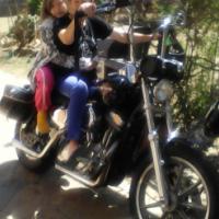 Harley Davidson Sportster (Custom)