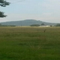 Build your dream home on a stunning stand
