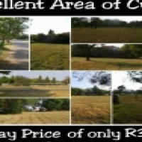 2 Stands for Sale Great area