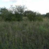 VACANT 3.1 HECTARE STAND IN BUFFELSDRIFT