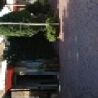 Hammanskraal  (Renstown )