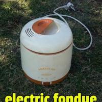 Electric Fondue
