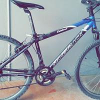 Silverback Mountain Bike