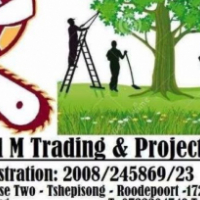 Proud m trading and project