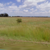 FOR SALE : VACANT PLOT - 2.3274HA - NELSONIA