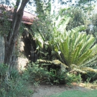 Enticing 4 Bedroom family house in Roodekrans