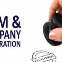 company registration , plus free website and logo design