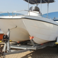 17 Ft Orion Cat with 2 x 60 Hp Bigfoot Mariners Engines