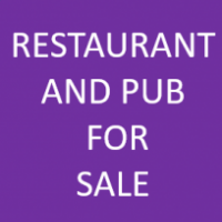 Pizza Restaurant  and Pub with slots machine  for sale