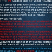 Financial Data Recording and Reporting Services