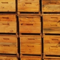 LANGSTROTH BEE-HIVES