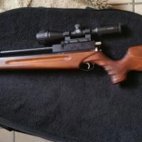 PCP Air Rifle .22 cal (5.5mm)