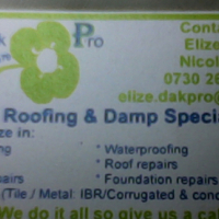 roof leaks and roof painting and dampproofing