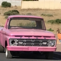 1964 Ford F100  V8 for restoration