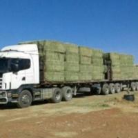 Scania Lorrie in uitstekende toestand