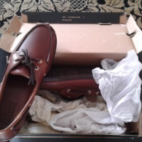 Sabego shoes brand new old school
