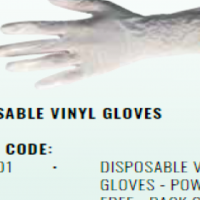 DISPOSABLE VINYL GLOVES - POWDER FREE - PACK OF 100