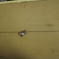 Filing cabinet S025095a