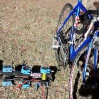 Trek roadbike and car carrier