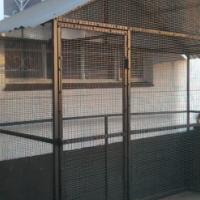 Avery Bird cage