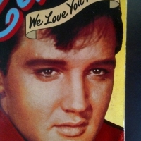 BOOK: Elvis we love you tender