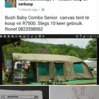 Bush Baby Combo Senior