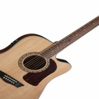 WASHBURN HD10SCE