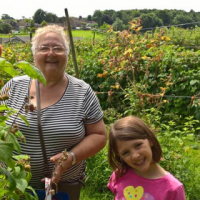 Granny's nanny services and school transport - Amalie Bekker