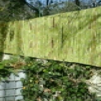 wattle stick and reed panels (fences)