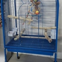 Big parrot cage for sale