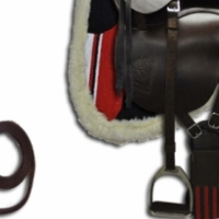 Trail Ranger Starter Kit including saddle, cinch, stirrups, numnah, bridle & bit