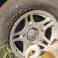Lada Niva 1.7i Mag wheels with tyres