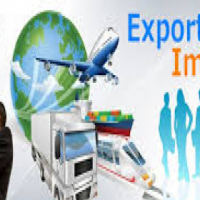 IMPORT /EXPORT AND CROSS BORDER PERMITS - APPLY NOW