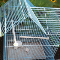 Fish tank and bird cage for sale R300 for both
