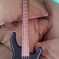 4 string action Cort bass