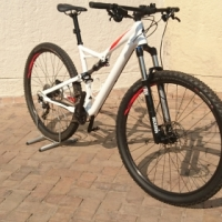 Specialized camber L frame