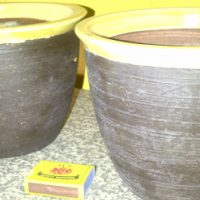 Twin pot plant pots