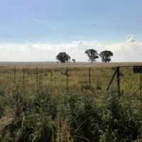 4,5 hactare Vacant land/plot for sale