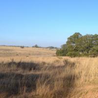 Randfontein Rikasrus Vacant land 9.6 Hectare