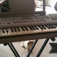 Electric piano for sale