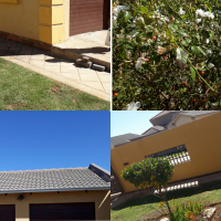 Outside room with private entrance for Rent in Windmill Park, Boksburg