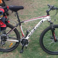 Raleigh 26 Speed Mountain Bike