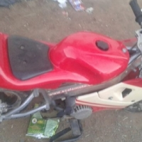 Pocket bike te kop
