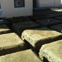 South Rand Soil Poisoning Services - 072 390 9626