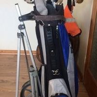Jaxx Golf Clubs and Cart