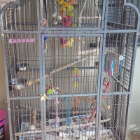Beautiful Large Parrot / macaw Cage for Sale