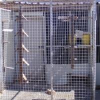 Racing pigeon loft for sale