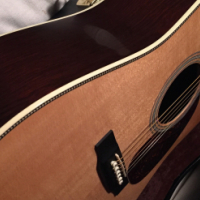 Product Description The Martin HD28MP Acoustic Guitar is truly a tonal and visual masterpiece. Solid